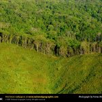 deforestationpanama-ap02031203981-sw